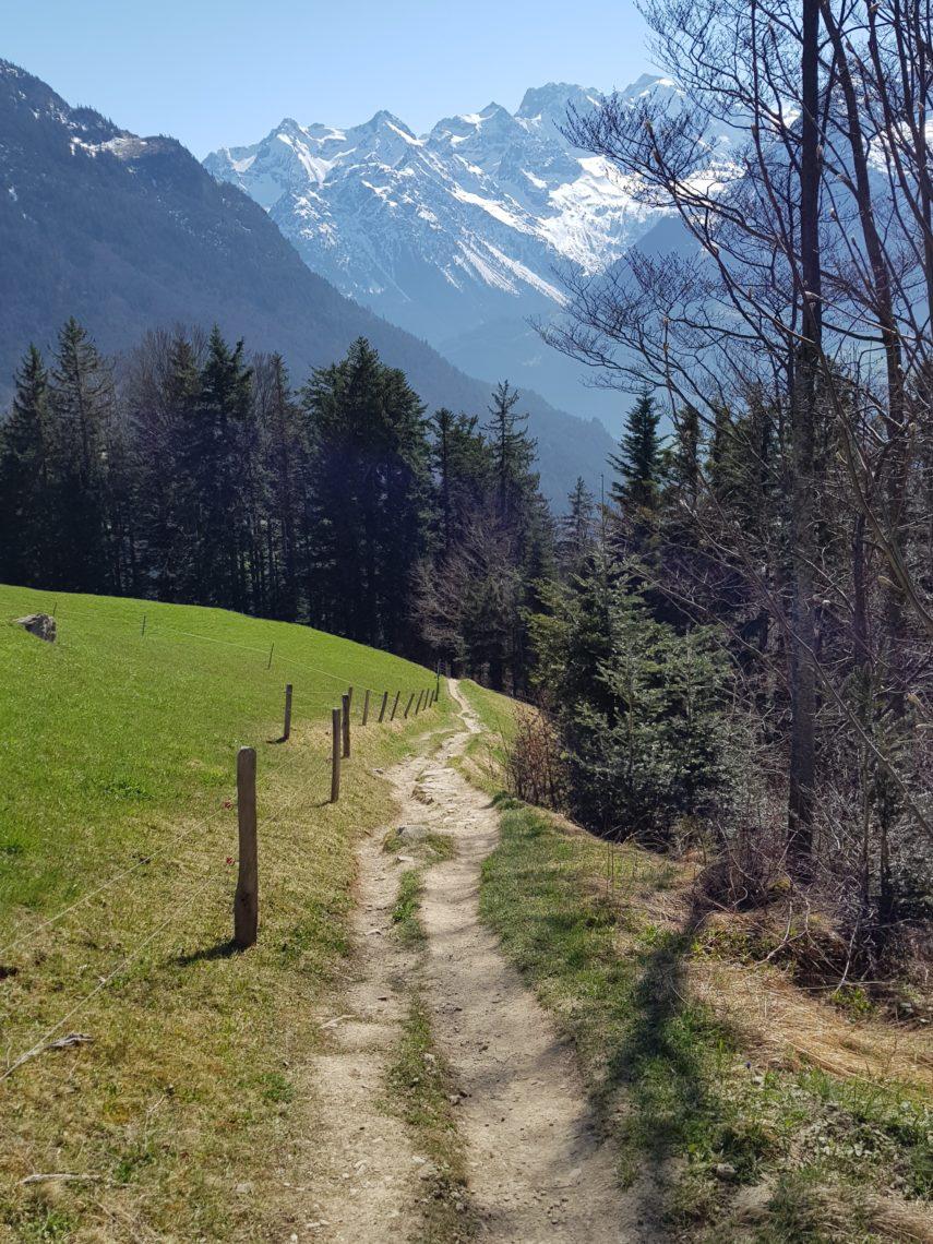 Wege auf dem Haldi ob Schattdorf