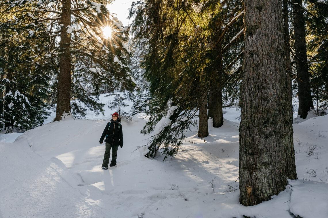 Der Fototrail führt an bewundernswerten Winterwanderwegen vorbei.