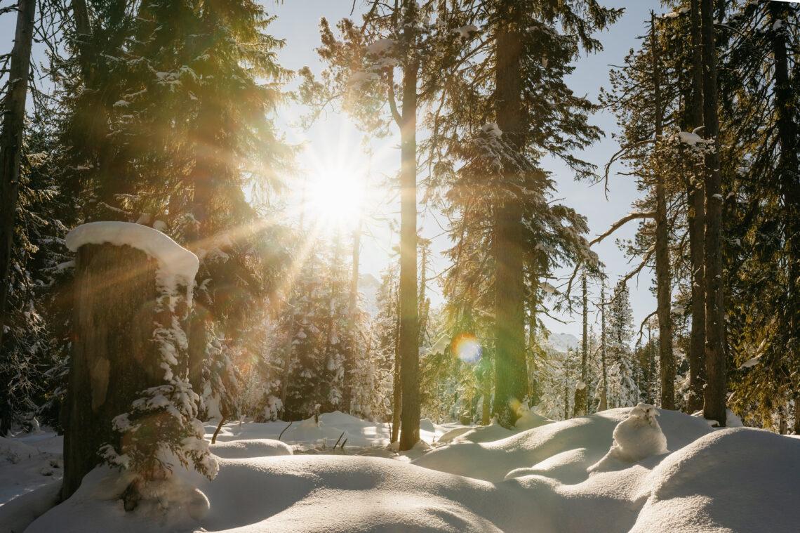 Der Fototrail führt durch die wunderschöne Landschaft des Entlebuchs.