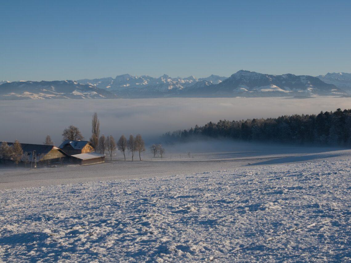 Auf dem Horben bietet sich eine atemberaubende Fernsicht auf das Seetal und die Alpen.