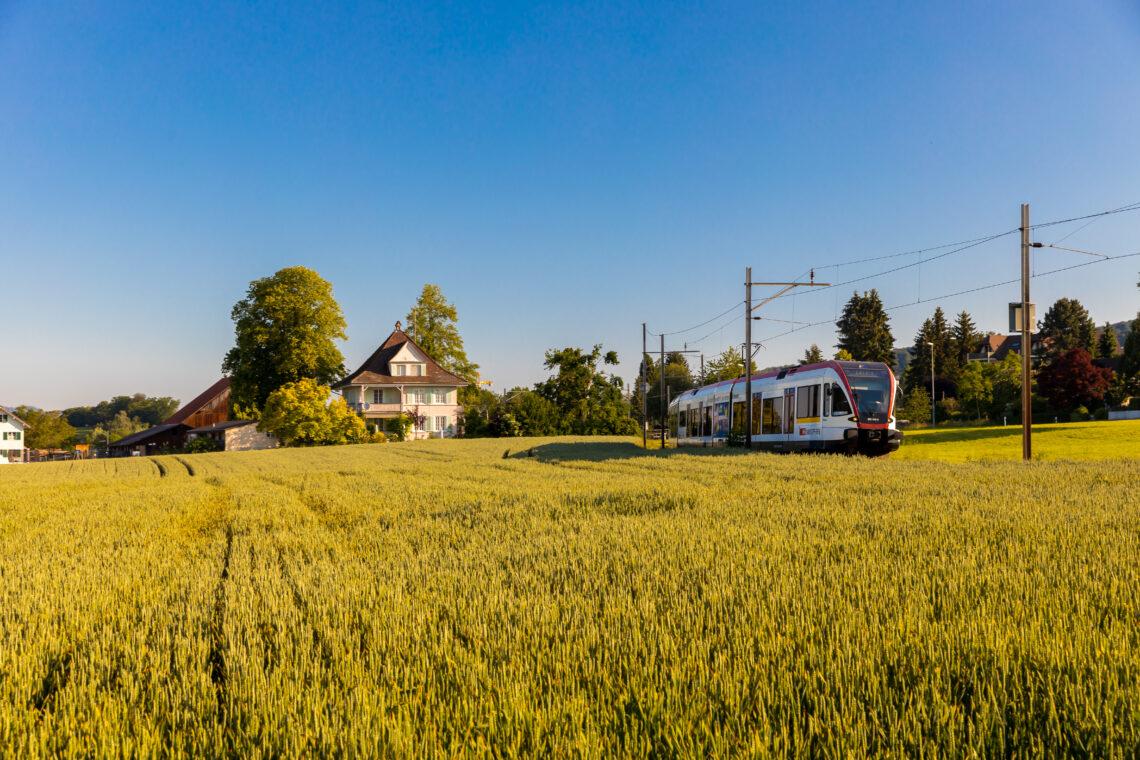 Die Seetalbahn fährt ihre Strecke im Seetal. Die Felder sind in ein goldenes Licht getaucht.