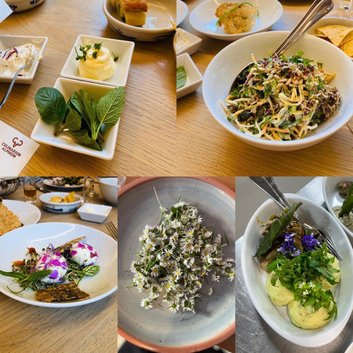 Kulinarische Kreationen aus den gesammelten Wilpflanzen.